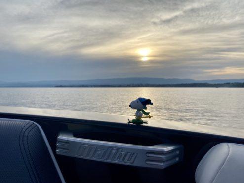 Cruising...