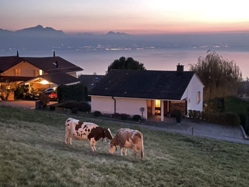 Two Swiss people meeting...